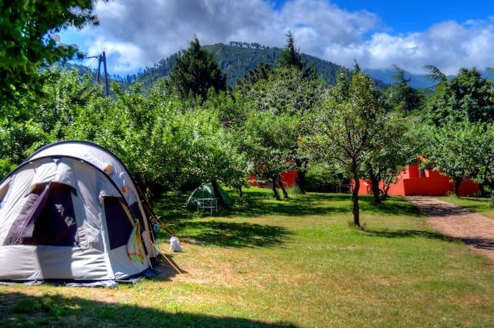 Tente 2 personnes au camping le soleil #1