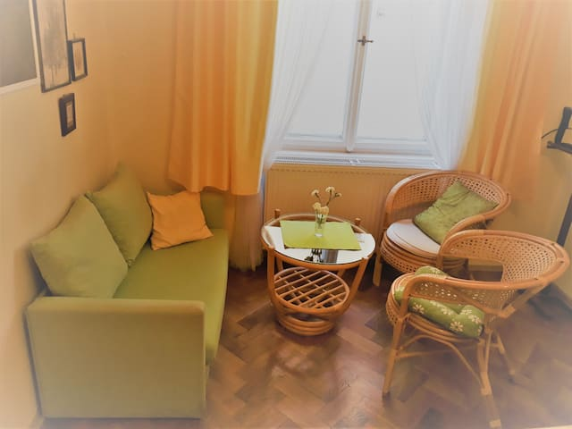 LOVELY APARTMAN IN THE CENTRE, NEXT TO PETRIN