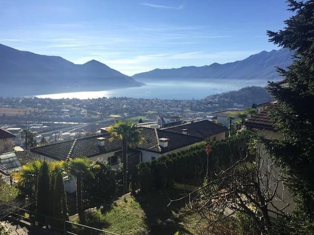 Ferienwohnung im Casa Fiorentina - Muralto - Apartamento