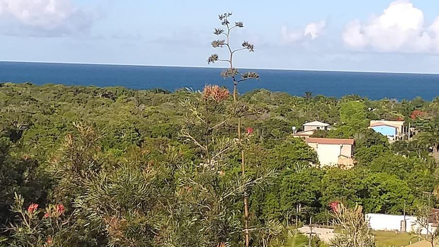 Venham conhecer a Costa do Descobrimento!