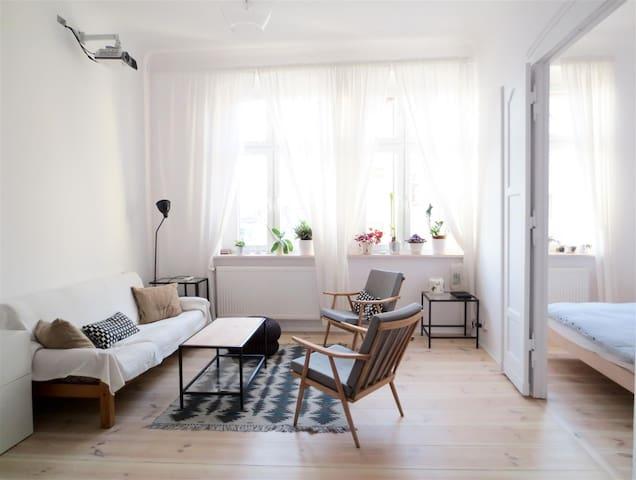 Słoneczne mieszkanie w kamienicy - Szczecin - Apartment