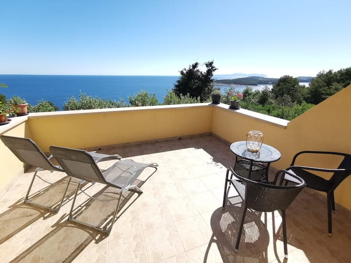 STUNNING Panoramic Sea View, Private Room -4