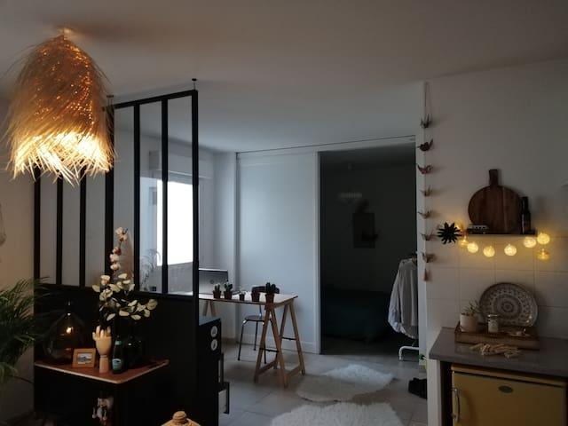 Joli studio 45m2 avec coin chambre et terasse