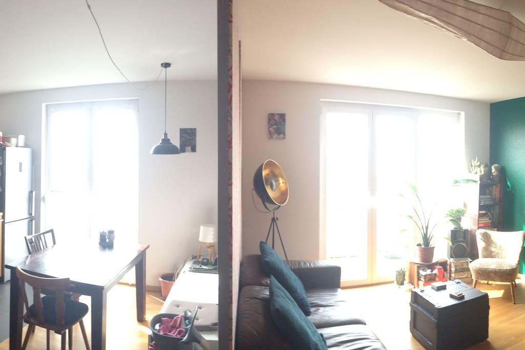 Blick in Küchen- und Wohnbereich, geteilt durch Raumteiler