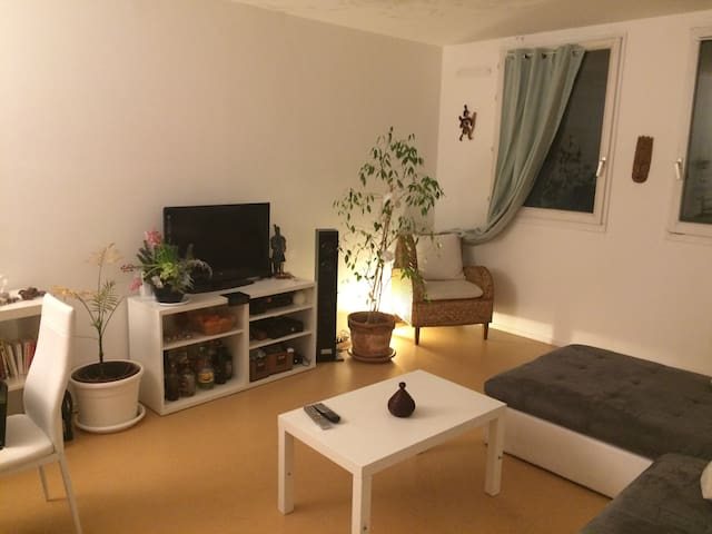Cosy Room in a charming appartment near Paris - 阿爾克伊(Arcueil) - 公寓