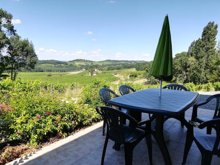 Les Vignes en Périgord