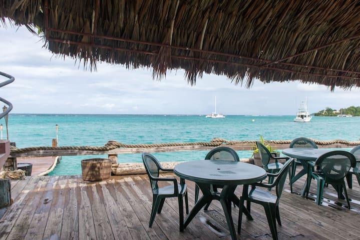 OCEAN PALMS_On The Sand - Ocho Rios - Bed & Breakfast