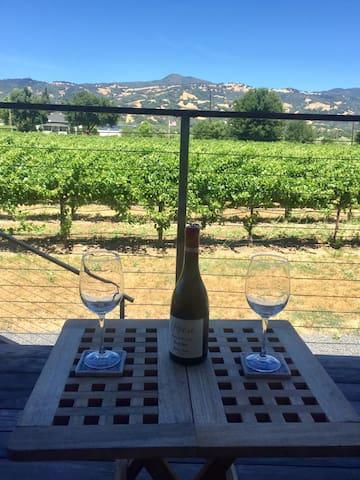 Contemporary Vineyard Retreat
