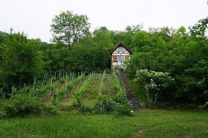 Gemütliches Weinberghaus mit traumhafter Aussicht