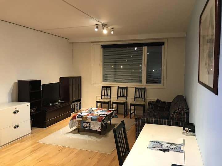 Spacious 3 room flat with balcony at City Center