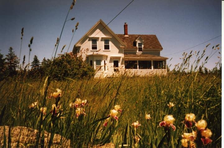 1890's Farmhouse with large meadow, near the beach