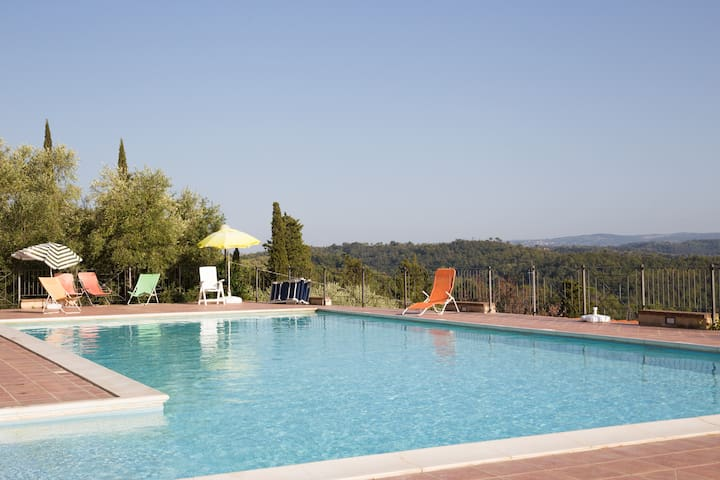Our pool, surrounded by woods and olives