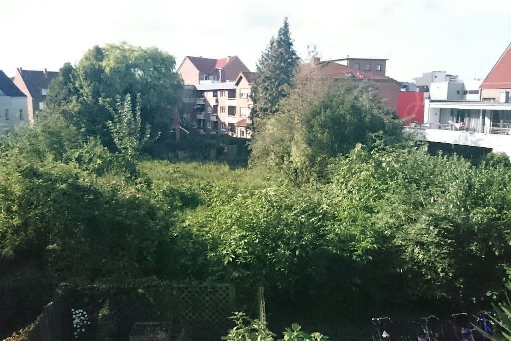 Wohnung Lingen Innenstadt