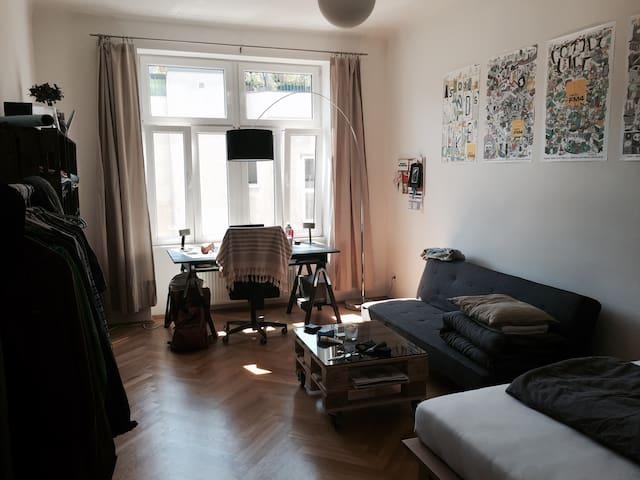 Schönes ruhiges Zimmer in perfekter Lage im 2. - Viyana - Daire