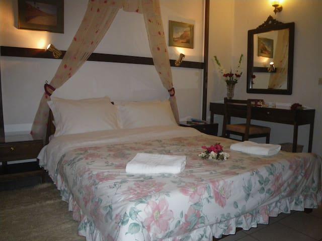 VillaGeorgie ap1 Tsagarada Pelion - Tsagkarada - Apartamento
