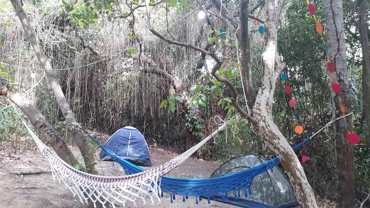 camping in Olinda