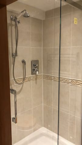 Second bathroom with double walk in shower, WC and sink
