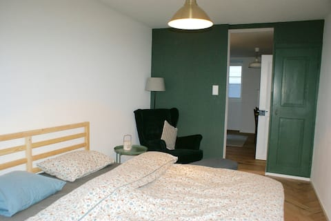Mooi gezellig  rustig appartement  in Glarus