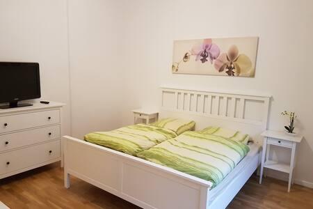 1 Zimmer Apartment oberhalb der Wurmbergseilbahn