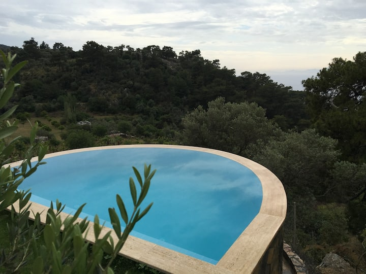 Palm House Dalyan - Private Infinity Pool