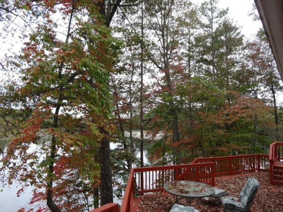 The leaves in the fall landing on the deck.