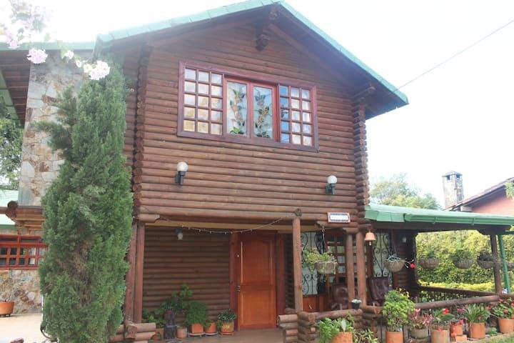 Log Cabin in Paradise