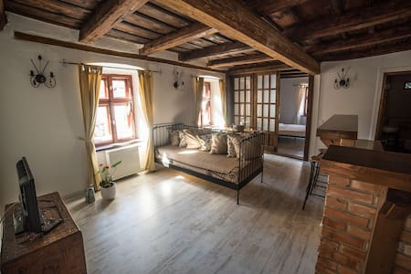 Spacious Apartment in the Old Town - Sibiu - Apartment
