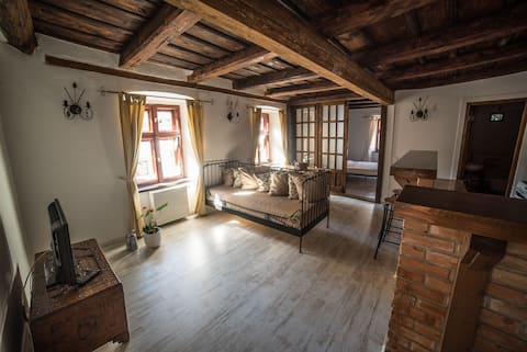 Historian's Three-Room Apartment in the Old Town