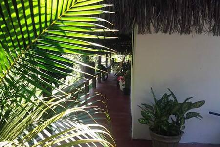 House for Vacation in Serra grande/ BA