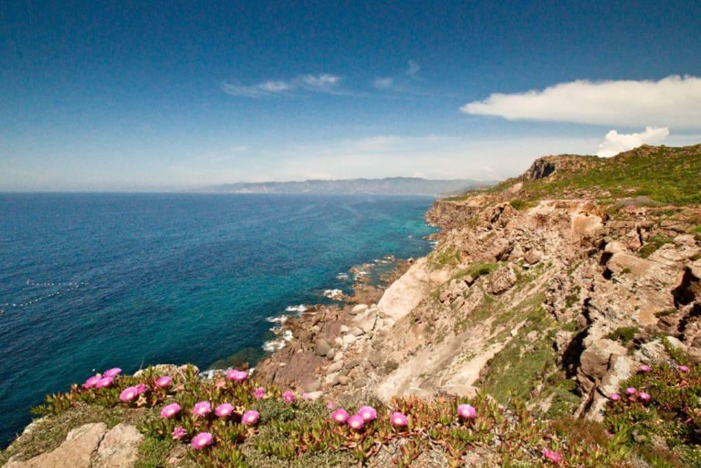 Costa panoramica