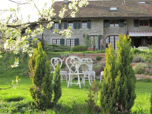 Beautiful appartement in Forel Lavaux