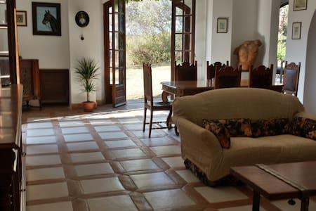 Casa Rò - Gallina