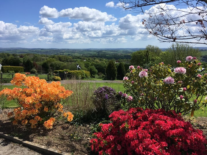 Cosy Hares lodge in the Tamar Valley