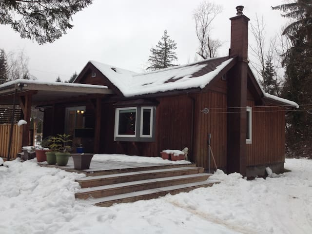 Country Cottage - Courtenay - Casa