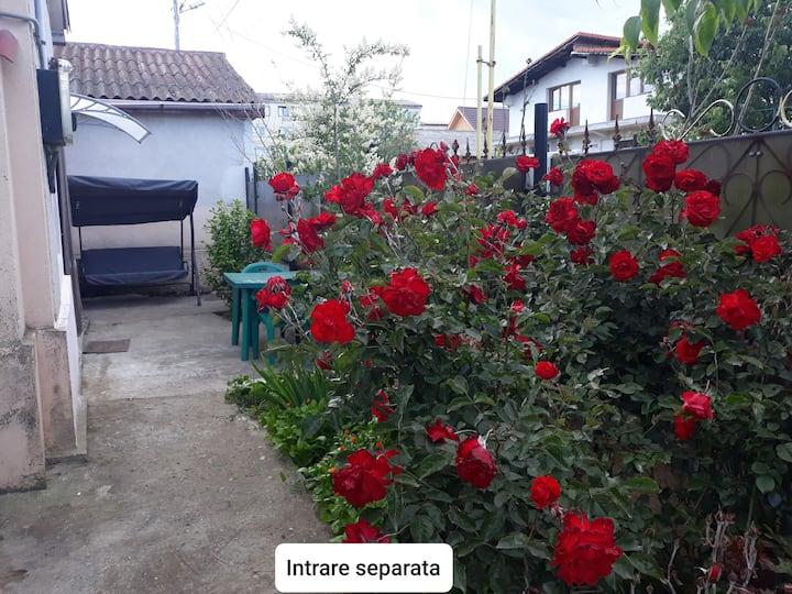 Apartament la casa cu terasa privata OANA Mangalia