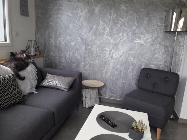 Appartement 2 pièces lumineux et cosy
