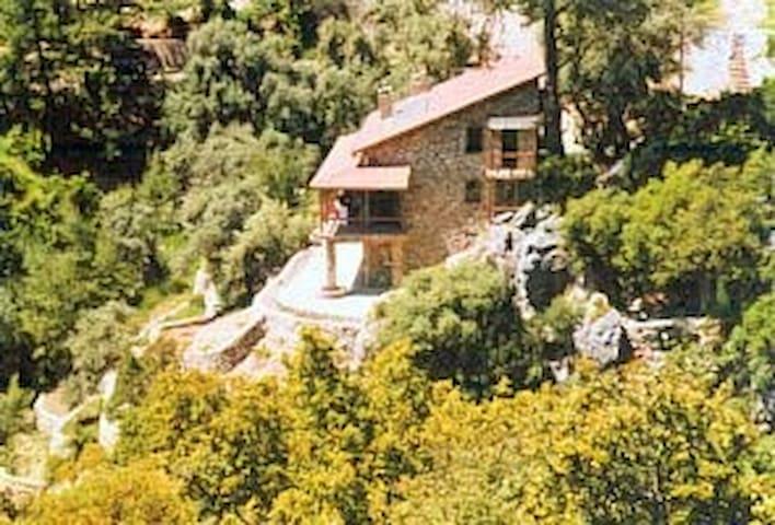 TASEVI  (a verry verry special home) - Ölüdeniz Belediyesi - Casa