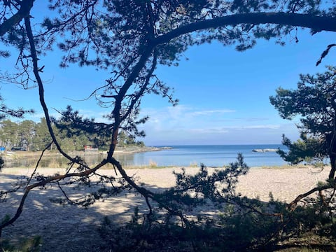 Charmig stuga nära strand och klippor.