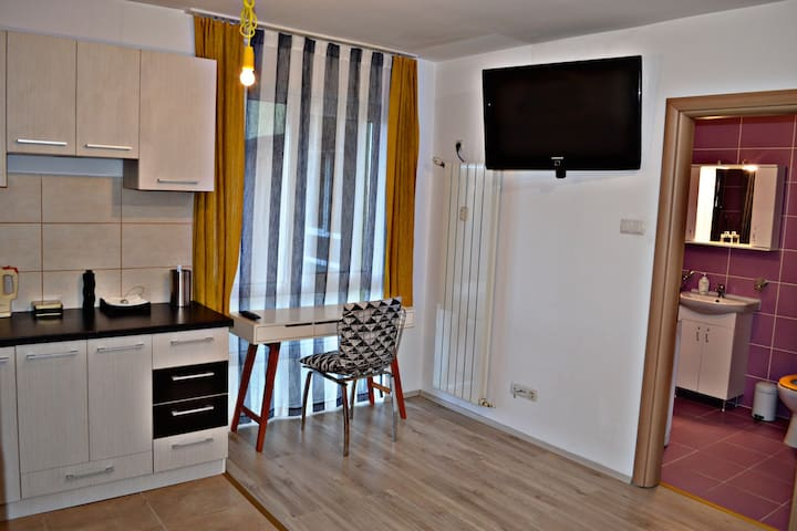 Cozy studio Oradea (free private parking)