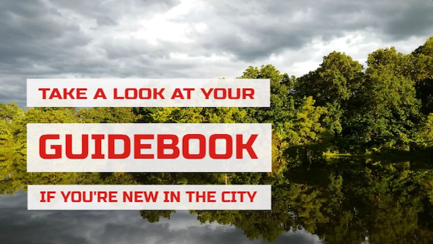 Your Guidebook