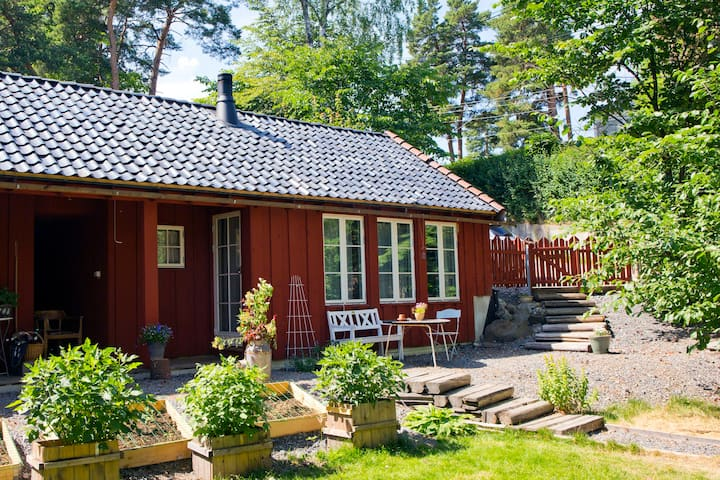 Little cabin near Viking ship museum