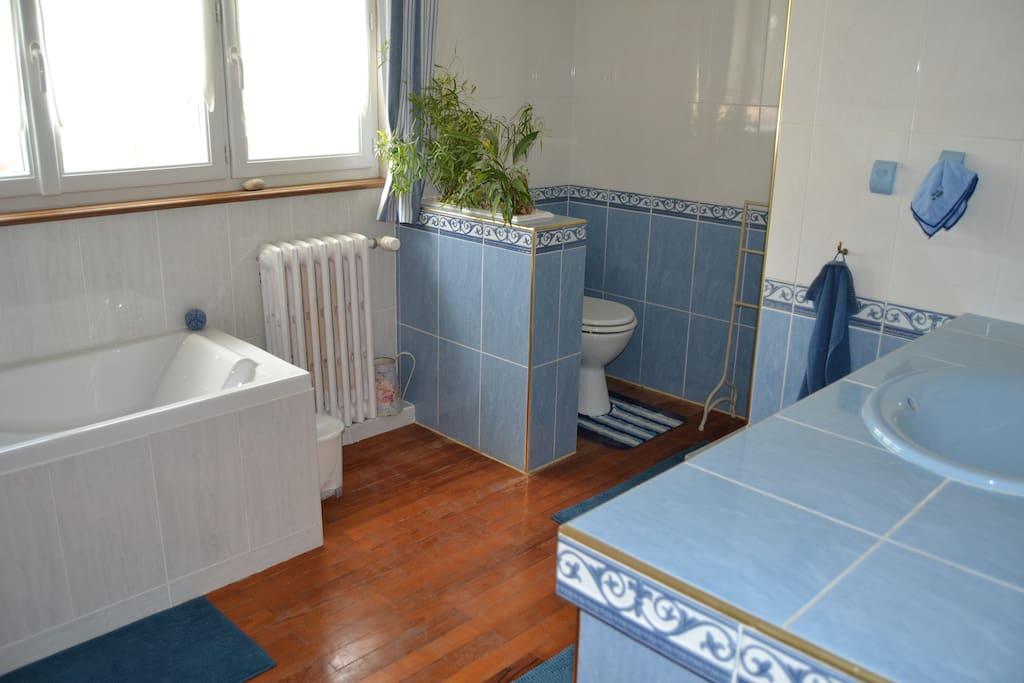 Salle de bain avec baignoire douche et wc