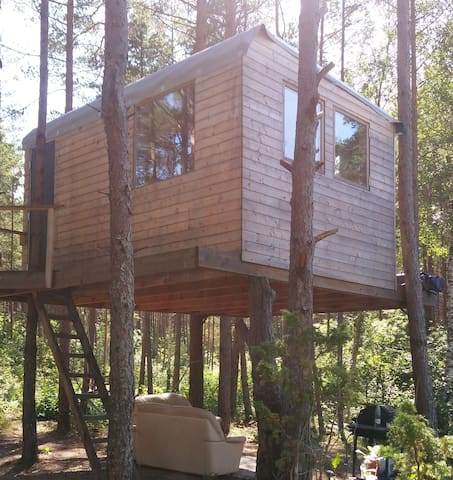 Romantic and private treehouse in the forest