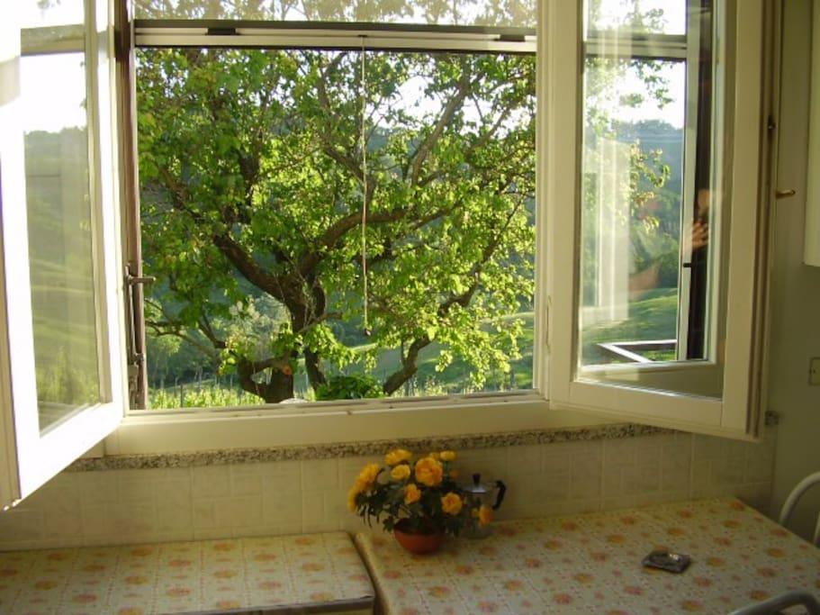 finestra angolo cottura
