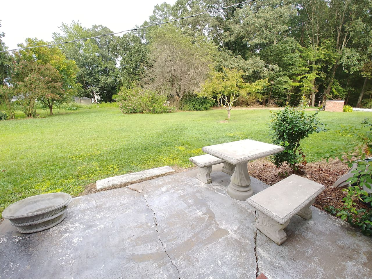 Back patio and picnic area