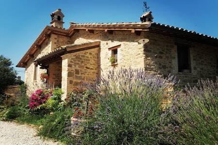 Il Casale di Fiore - Appartamento in Umbria