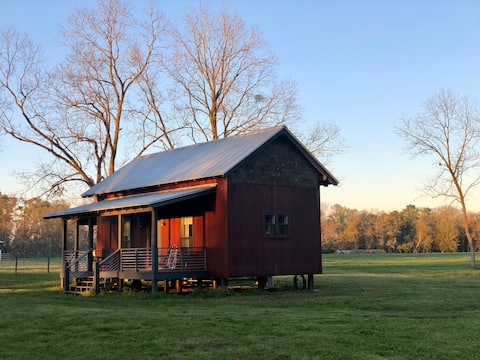 Modern Farm cabin on a 215 acre old tobacco farm.