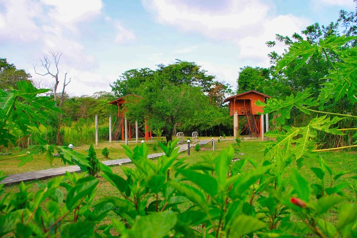 Sigiri Royal point  Tree House