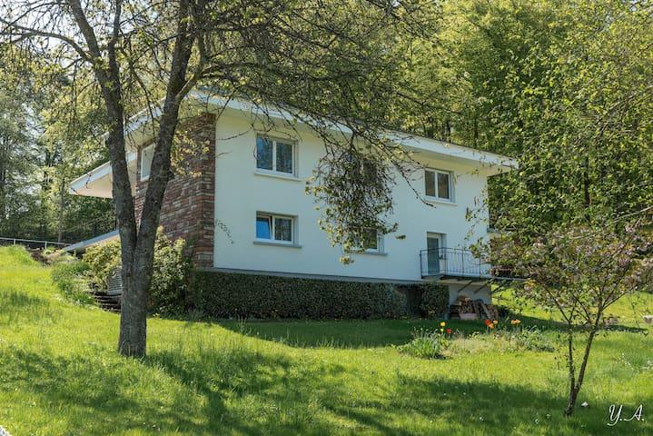 Appartement Villa O Bois Spa - Épinal - Apartemen