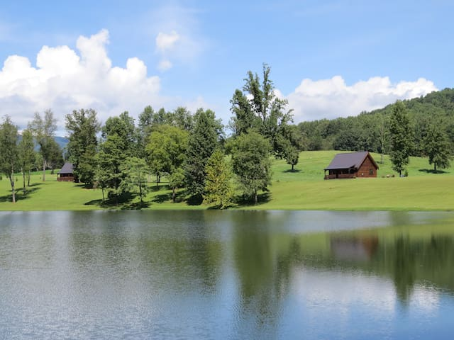 Lake front log Home on 200 private acres